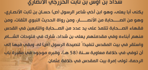 shadad_bin_aws