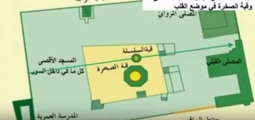 tahrir_geel9